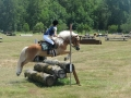 Schooling cross-country jumping