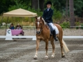 Working Equitation show with Junior Rider, 2017