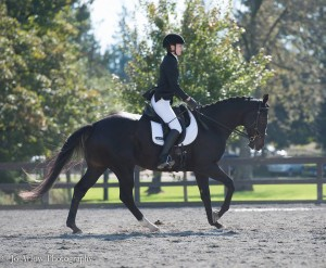 Solar cantering in dressage