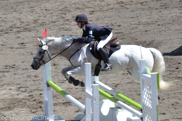 Grey pony show jumping
