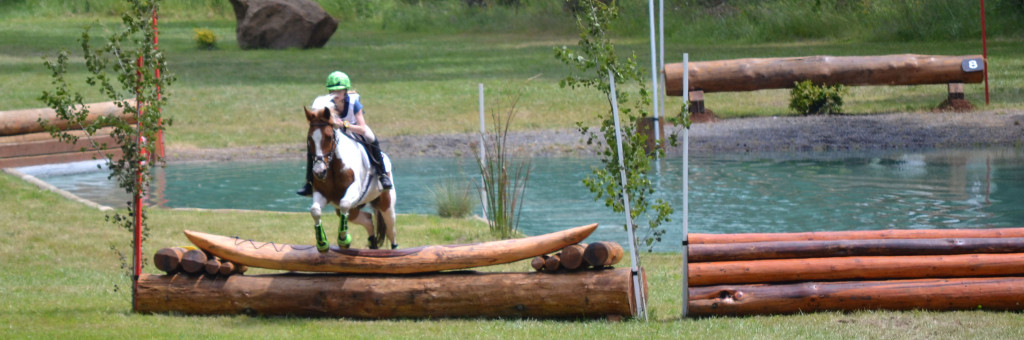 Paint pony jumping cross-country