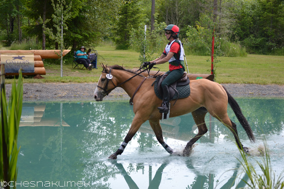 Pony trotting through a water jump