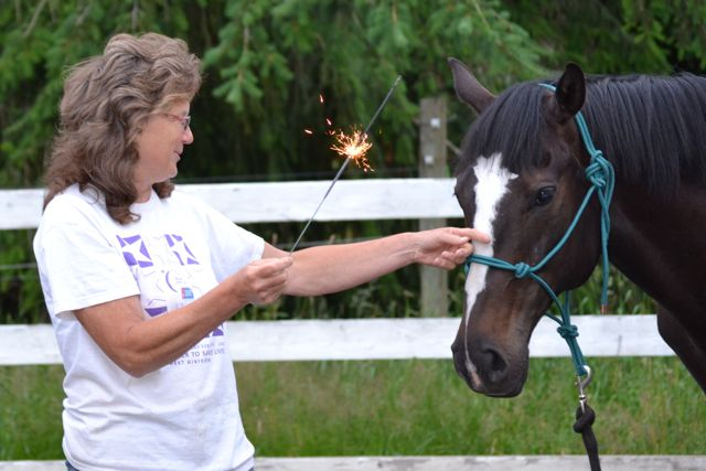Woman and horse standing with sparkler