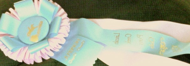 Fifth place horse trials ribbon