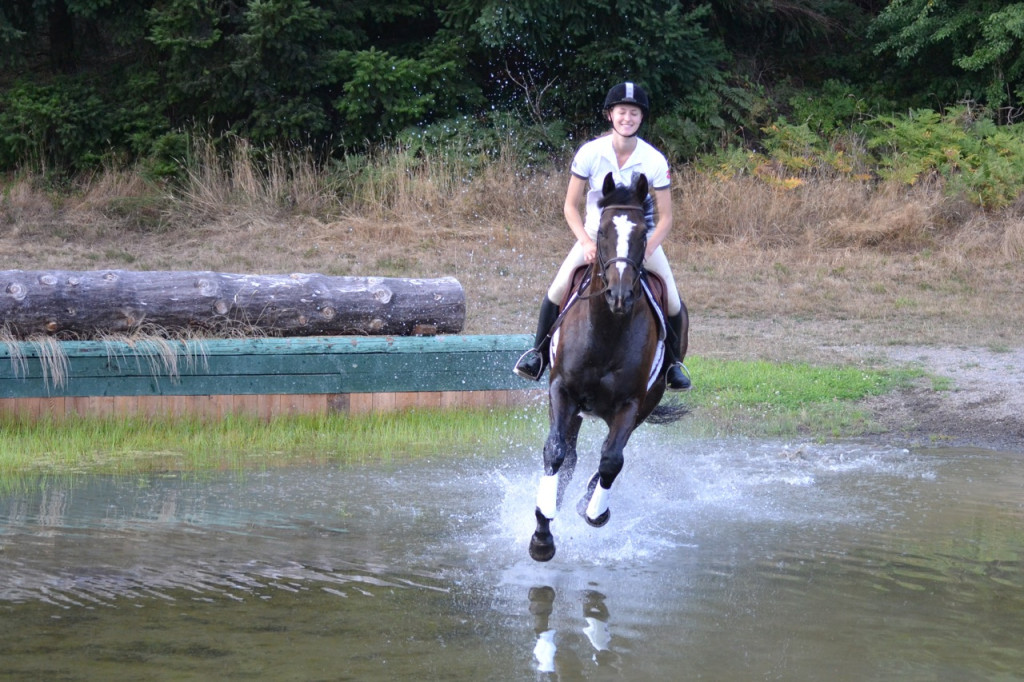 Horse cantering in water