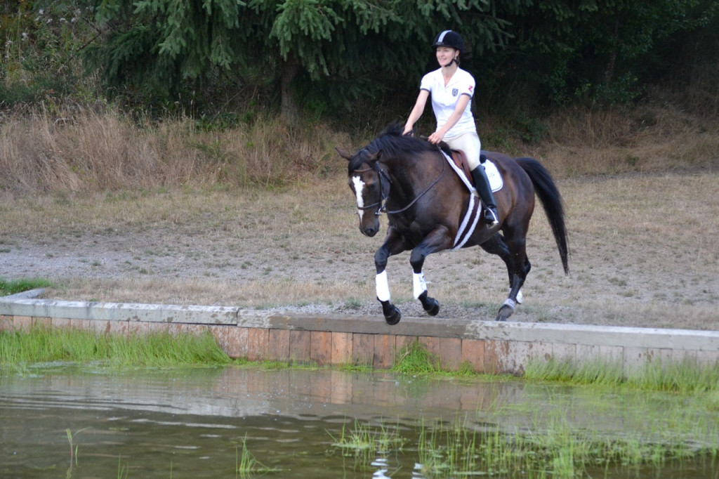 Horse jumping into a water jump