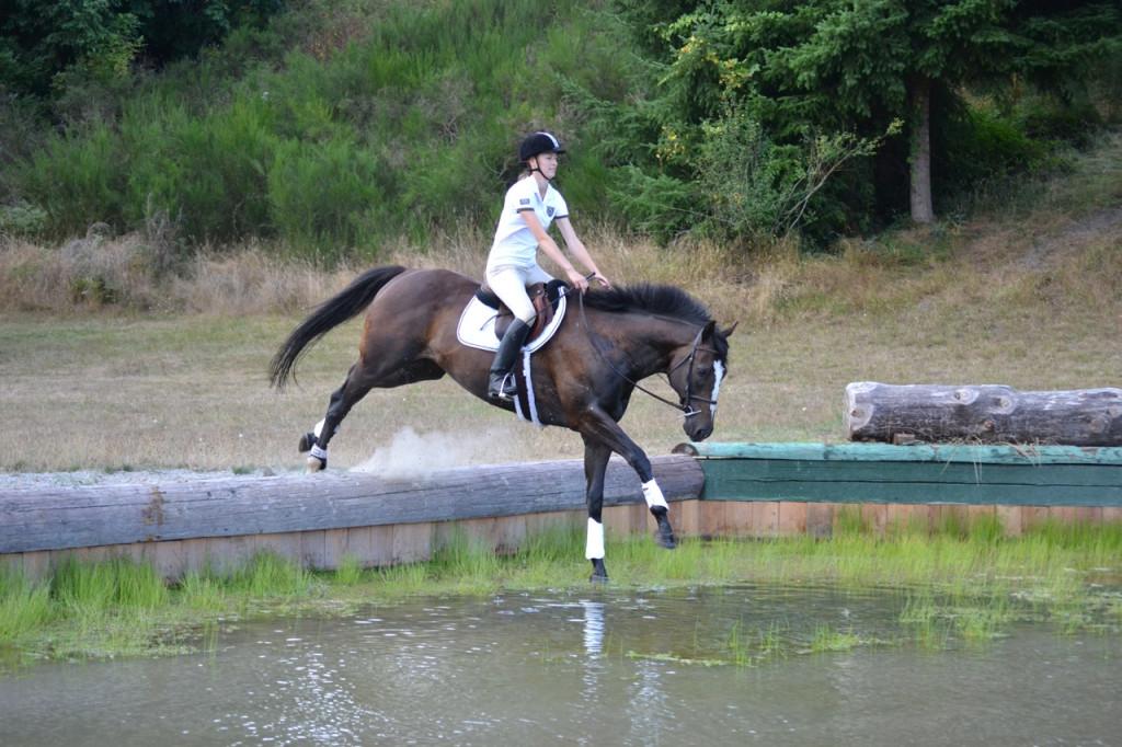 horse-jumping-down-bank
