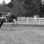 Horse and rider jumping a show jump