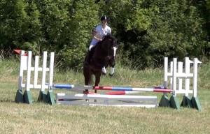 Horse jumping a small jump