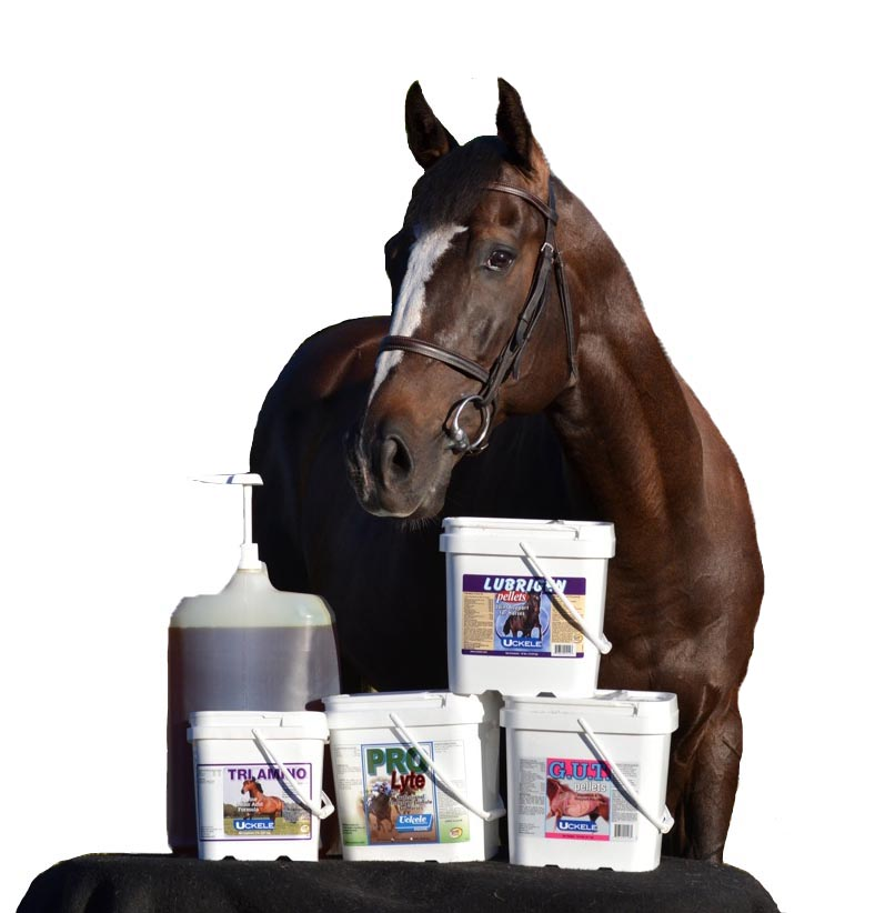 Uckele horse products