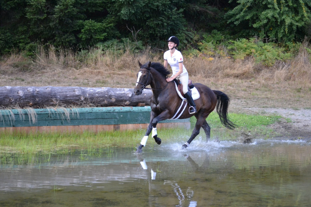 Horse cantering through a water jump