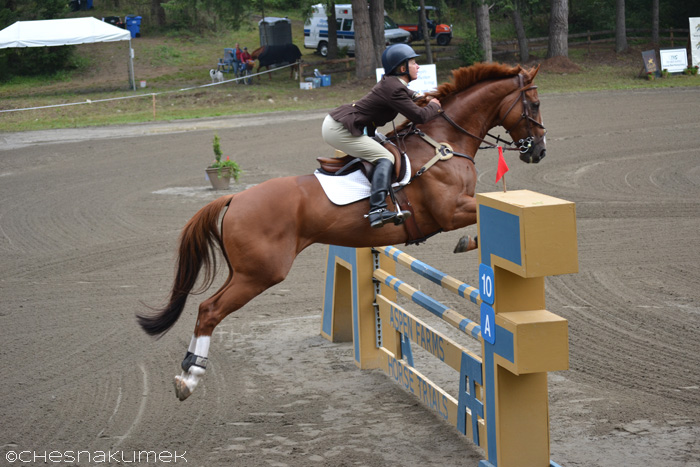 Anni Grandia show jumping