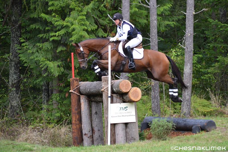 Karen O'Neal riding OTTB Markus