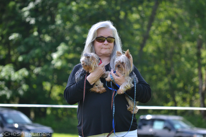 Lady holding two miniature Yorkies