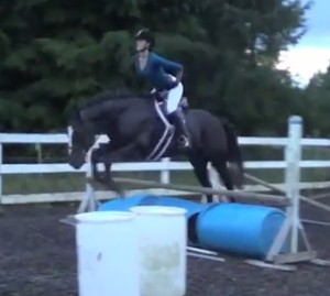 Jumping a horse with no hands