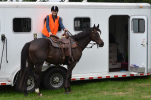 Getting on a horse using a horse trailer