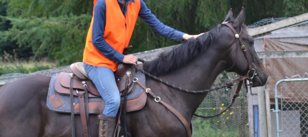 Solar in a Western saddle