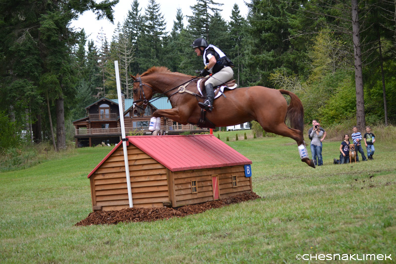 Caroline Smith and Tessa jump fence 13