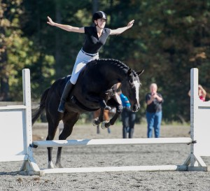Chesna jumping bridleless with no hands