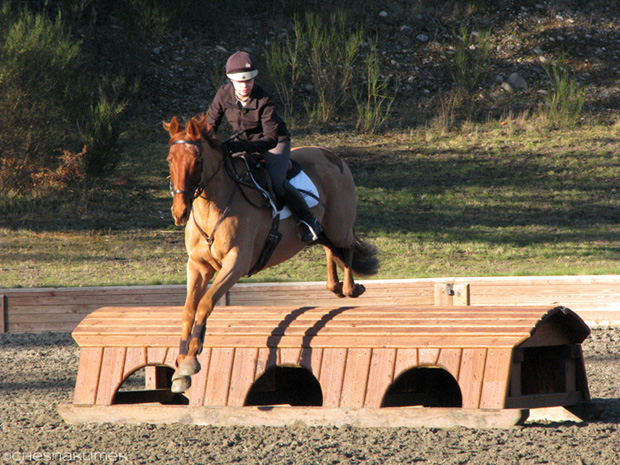 Cross-country jumping