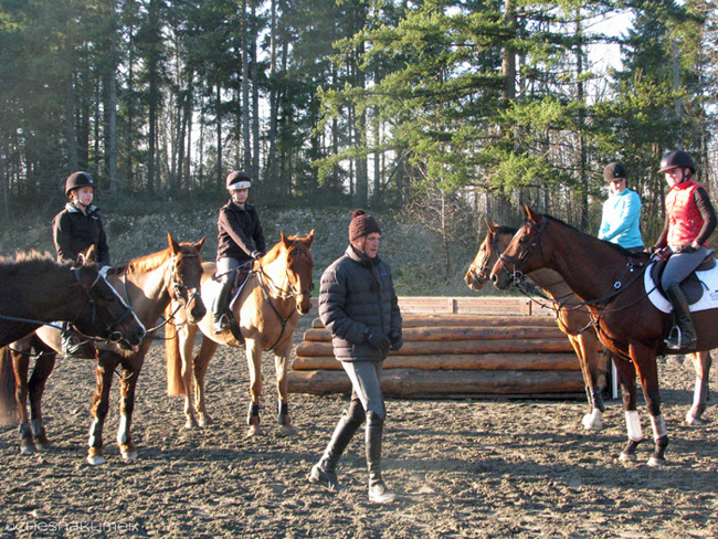 Boyd Martin clinic Training level group
