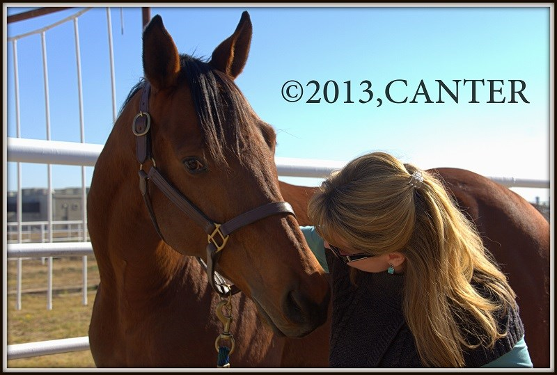 Bay racehorse kissing a volunteer woman