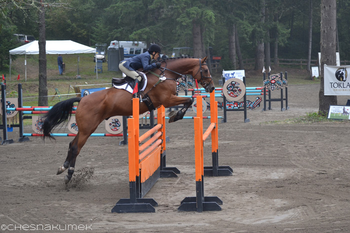 Horse clearing an orange Preliminary level stadium jump