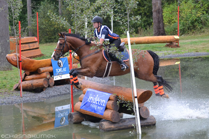 Bay horse jumping Preliminary level water complex