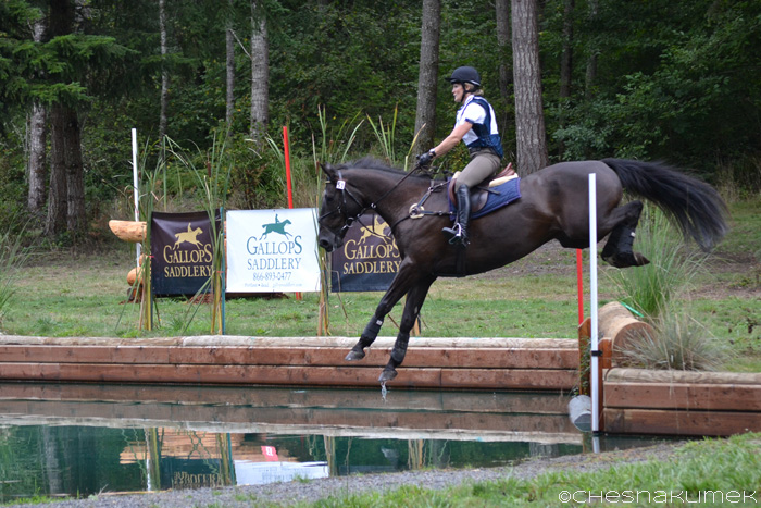 Black horse jumping into the Preliminary level water jump