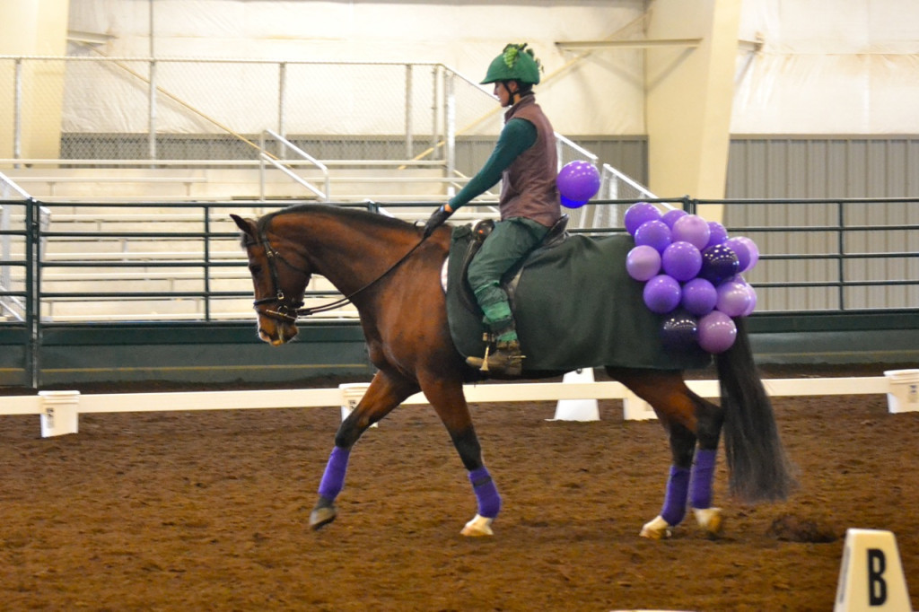 Trolls Grapes Jumps And Dressage Chesna Klimek