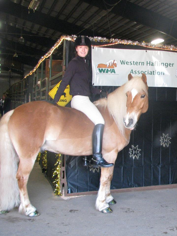 Western Haflinger Association