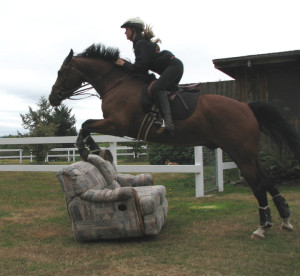 Horse jumping over a couch