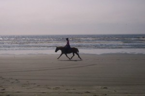 Pony trotting fast at the beach.