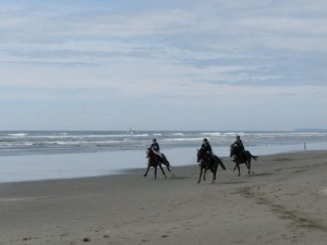 Horses racing on the beach