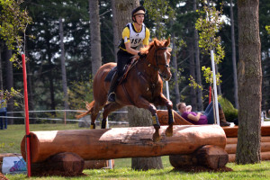 Cross country jumping horse