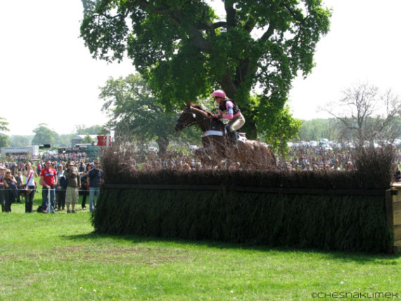 Three-day eventing horse jumping a large hedge