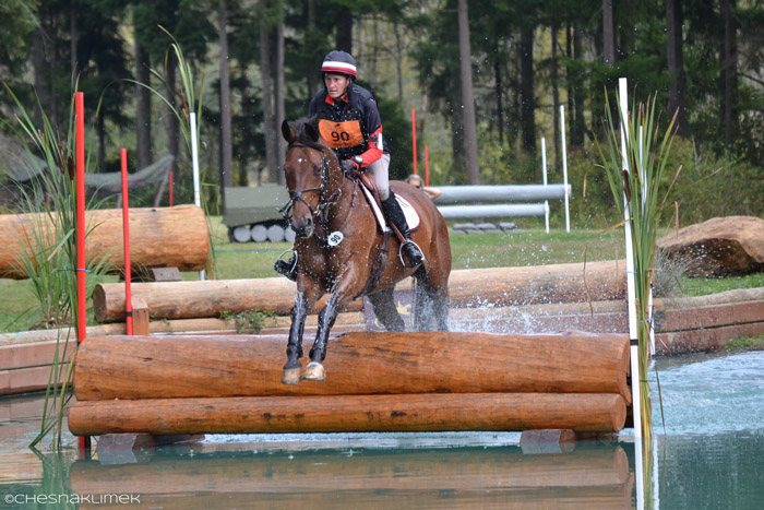 Cross country horse jumping water