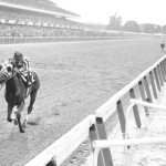 Horse winning Belmont race