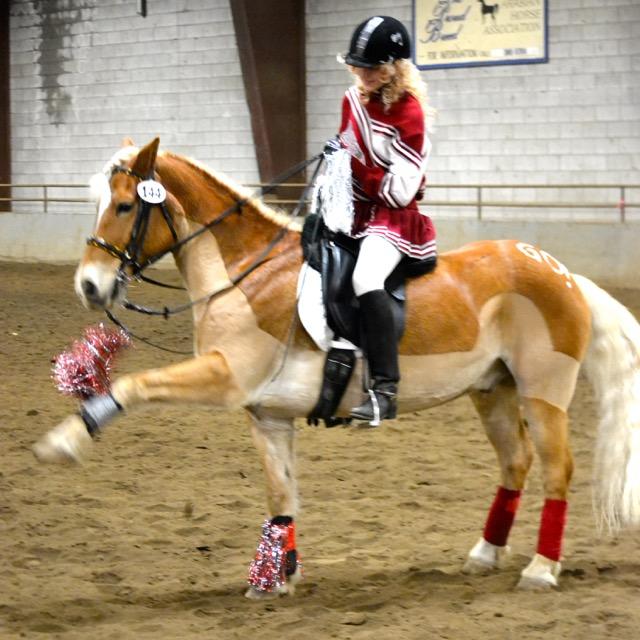Cheerleader Horse