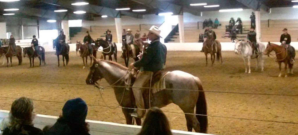 Horses in a riding clinic