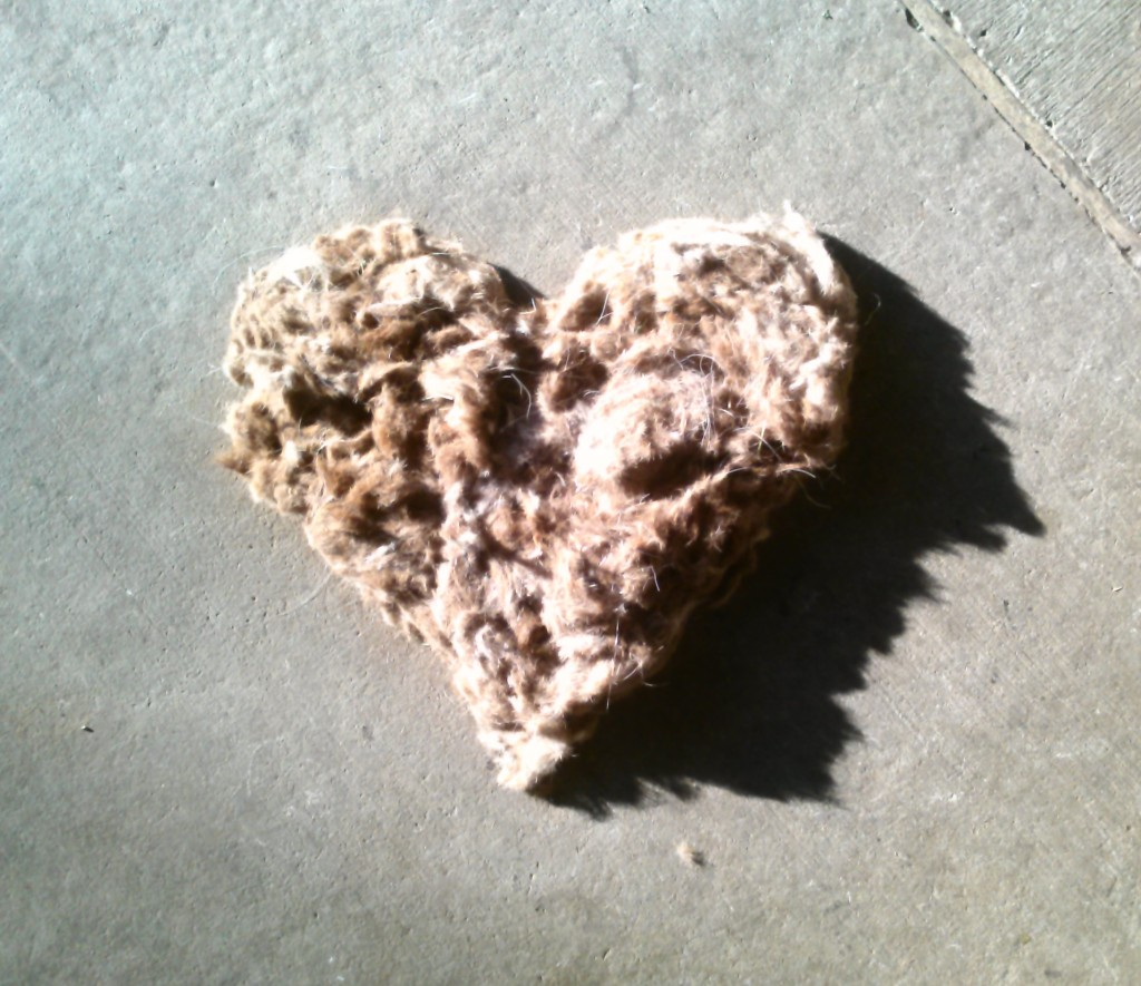 Horse hair shaped like a heart