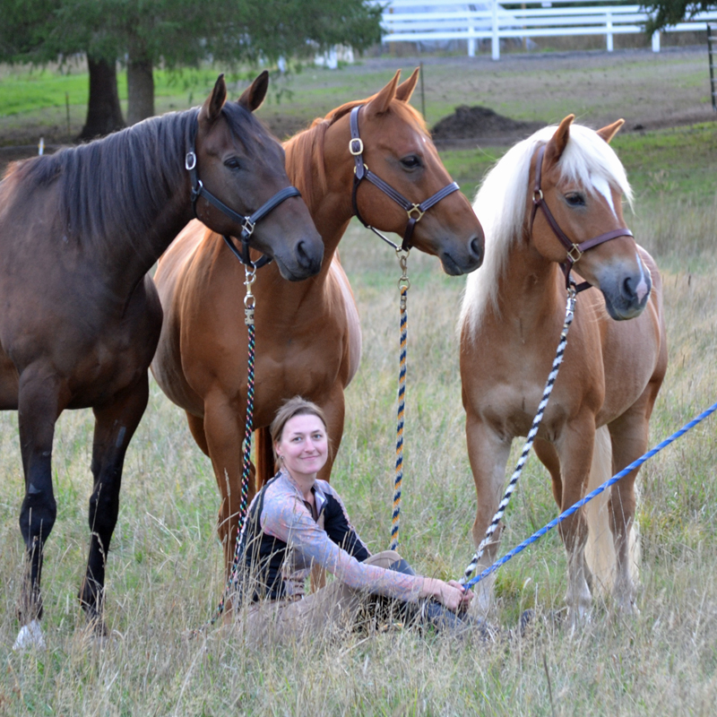 Three horses and a woman