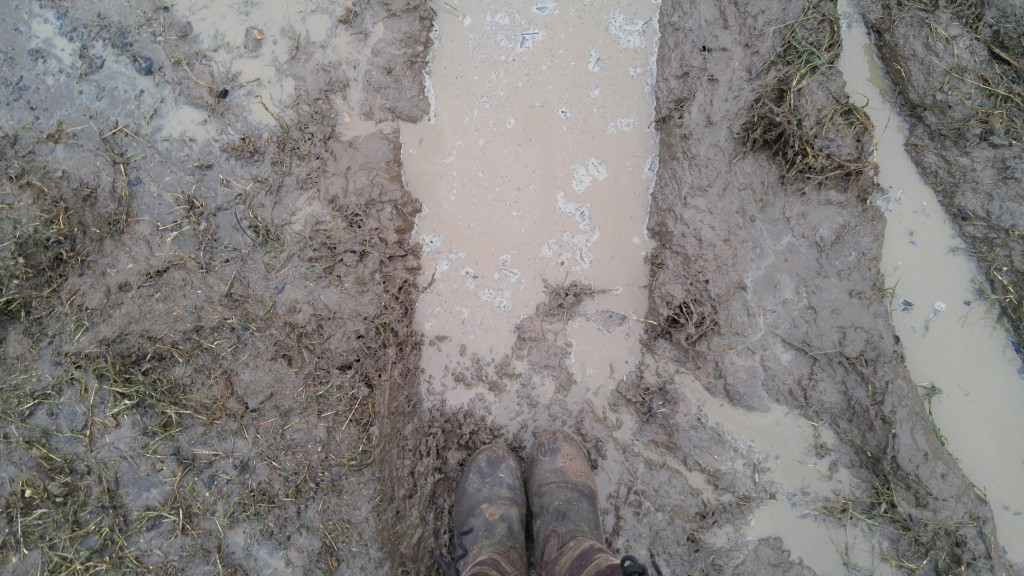 Waterproof boots in a mud puddle
