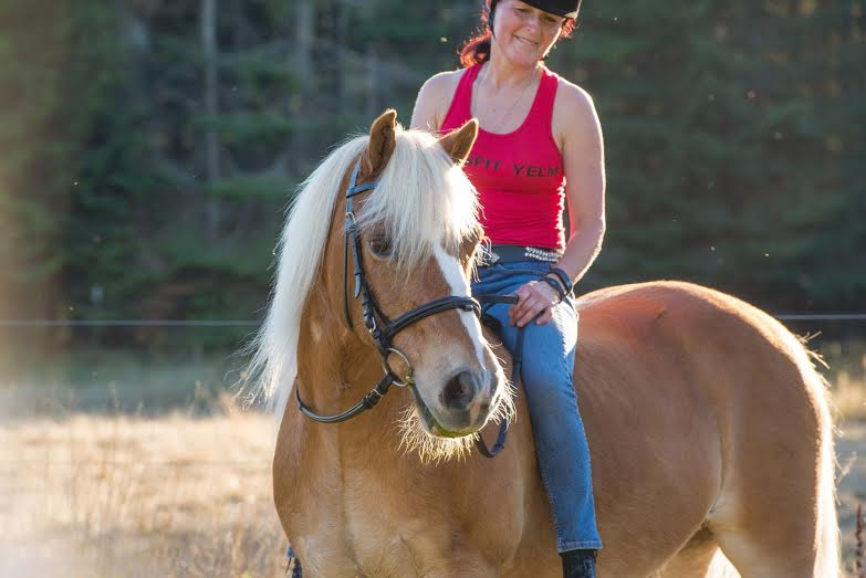 Haflinger horse and woman rider